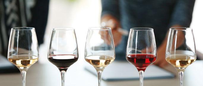 Cata de vinos blancos y tintos