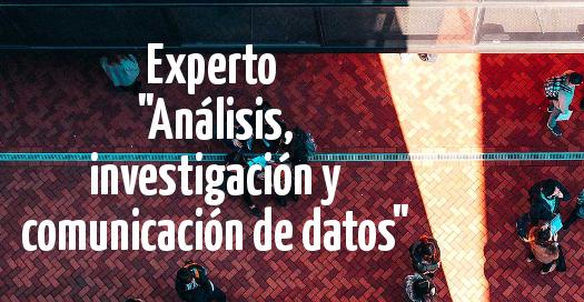 Experto Análisis, investigación y comunicación de datos