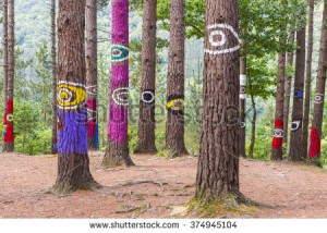stock-photo-the-forest-of-oma-urdaibai-biosphere-reserve-bizkaia-spain-374945104