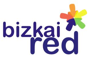 Logo_Big_bizkaired