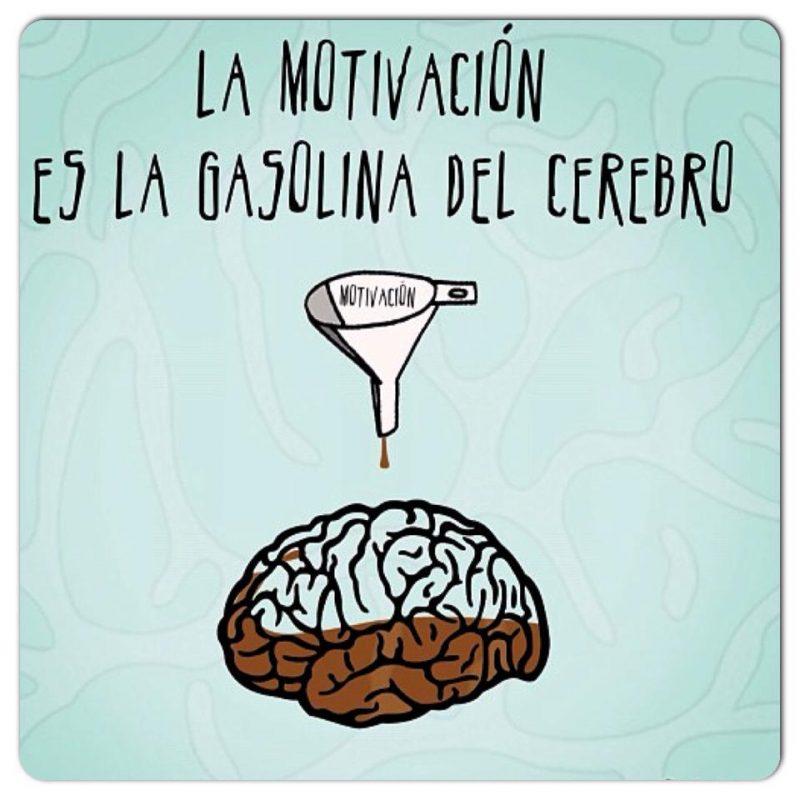 Fuente: www.planemprendedor.es