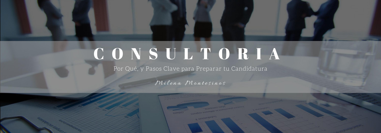 innovandis_MilenaMontesinos_consultoría